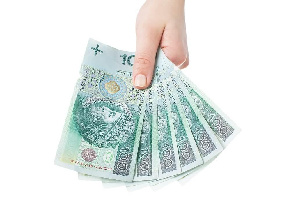 pieniądze przeznaczone na alimenty